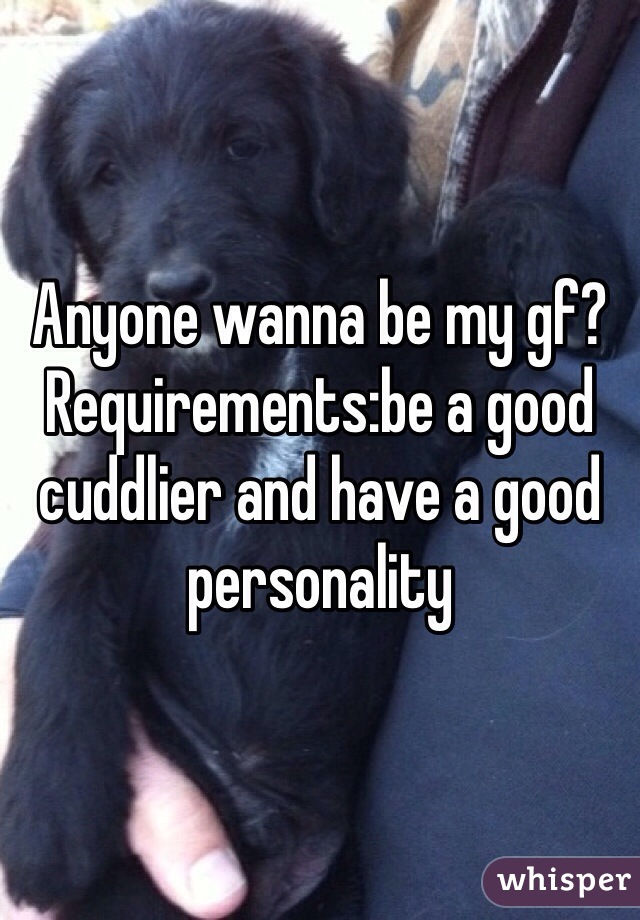 Anyone wanna be my gf? Requirements:be a good cuddlier and have a good personality