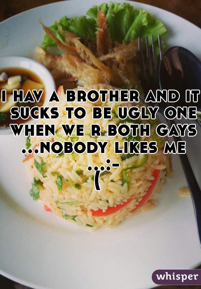 i hav a brother and it sucks to be ugly one when we r both gays ...nobody likes me ...:-(