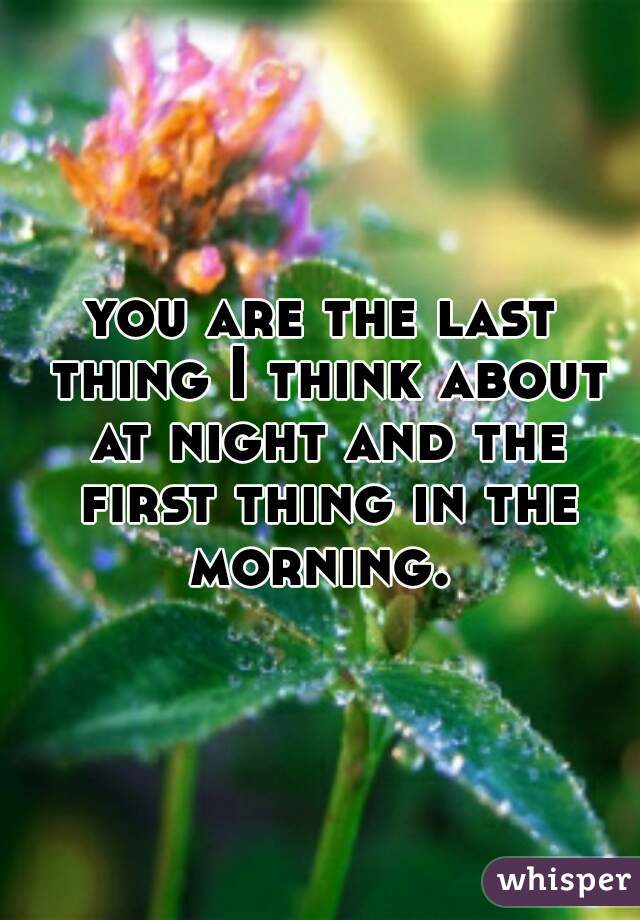 you are the last thing I think about at night and the first thing in the morning.