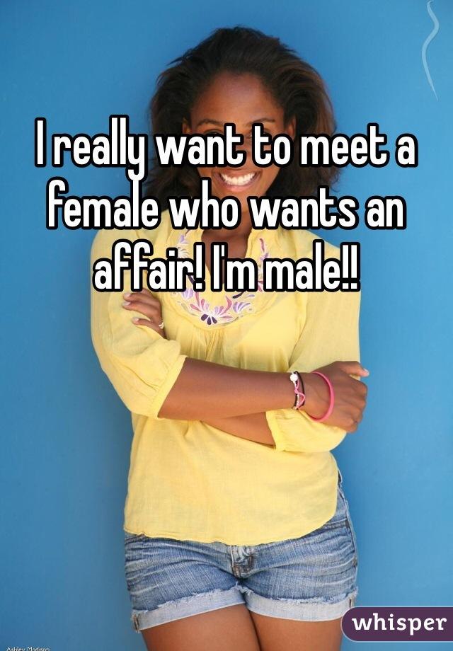 I really want to meet a female who wants an affair! I'm male!!