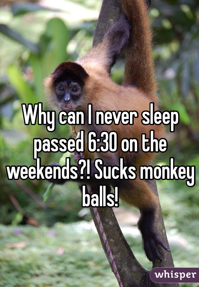 Why can I never sleep passed 6:30 on the weekends?! Sucks monkey balls!