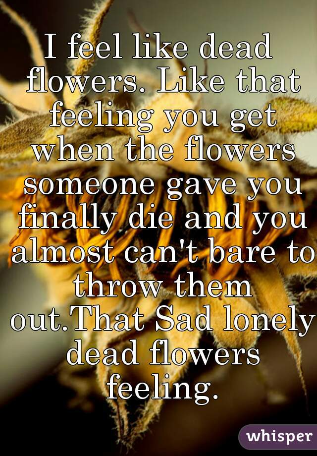 I feel like dead flowers. Like that feeling you get when the flowers someone gave you finally die and you almost can't bare to throw them out.That Sad lonely dead flowers feeling.