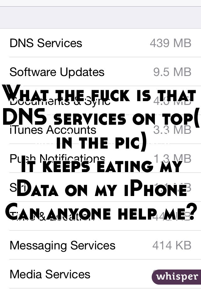 What the fuck is that DNS services on top( in the pic)  It keeps eating my Data on my iPhone  Can anyone help me?