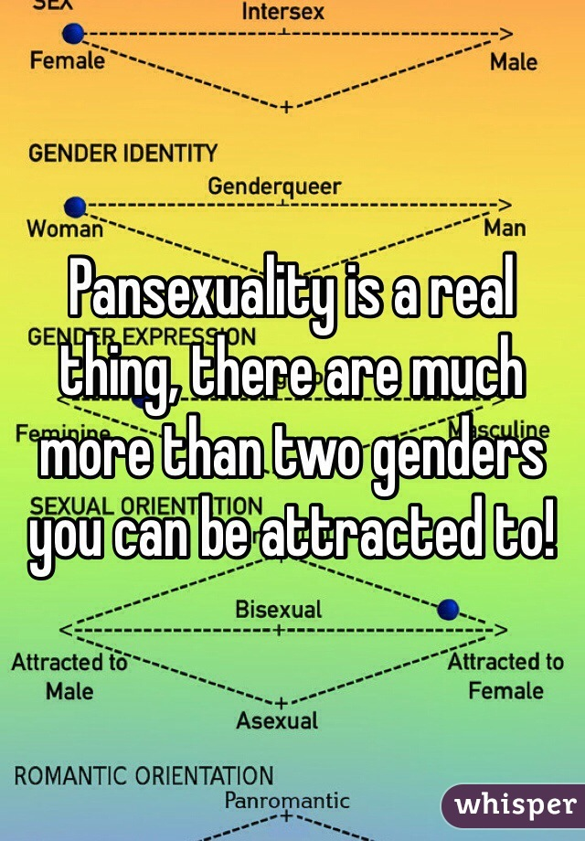 Pansexuality is a real thing, there are much more than two genders you can be attracted to!