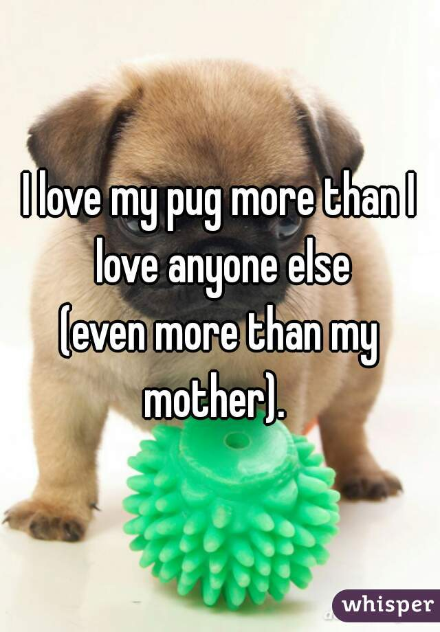 I love my pug more than I love anyone else (even more than my mother).