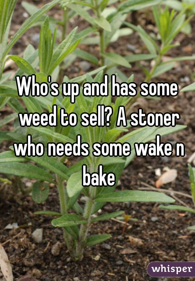 Who's up and has some weed to sell? A stoner who needs some wake n bake