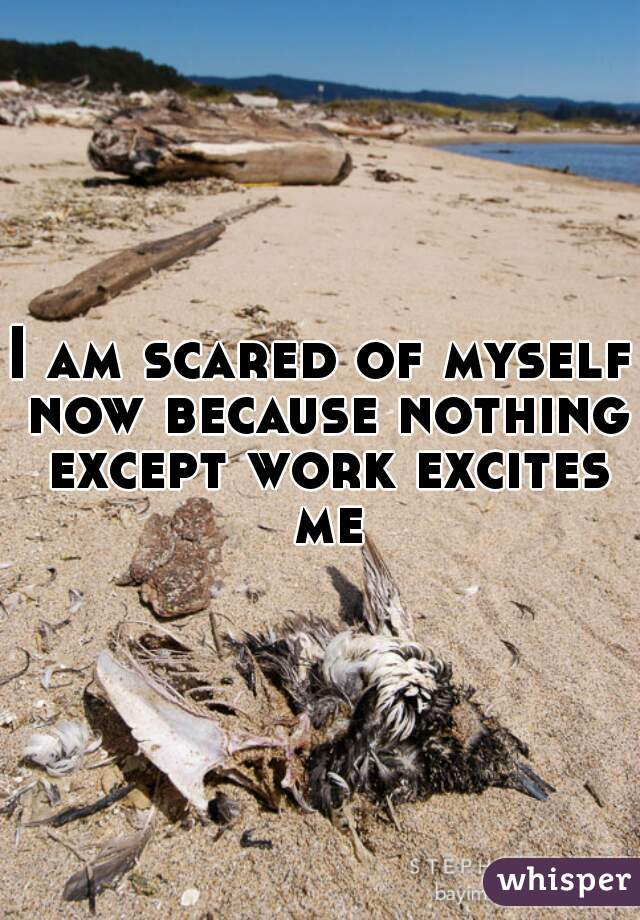 I am scared of myself now because nothing except work excites me