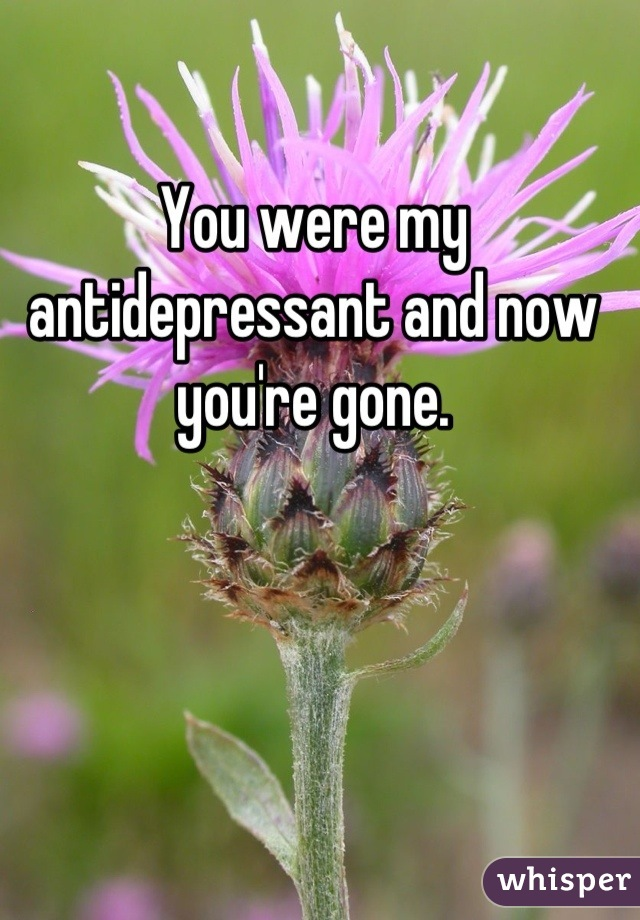 You were my antidepressant and now you're gone.