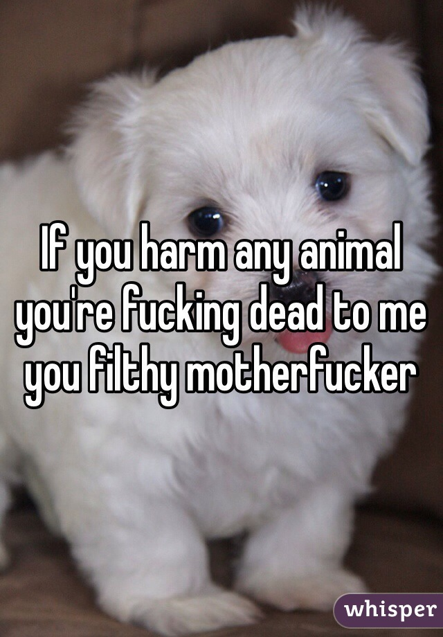 If you harm any animal you're fucking dead to me you filthy motherfucker