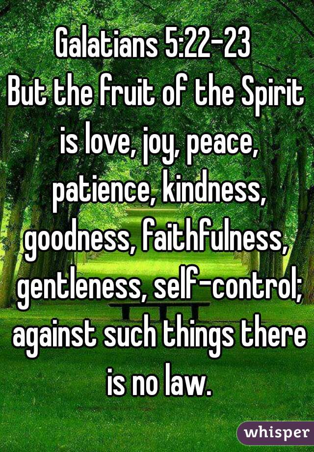 Galatians 5:22-23  But the fruit of the Spirit is love, joy, peace, patience, kindness, goodness, faithfulness,  gentleness, self-control; against such things there is no law.