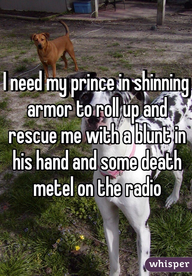I need my prince in shinning armor to roll up and rescue me with a blunt in his hand and some death metel on the radio