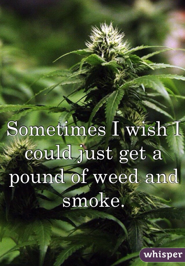 Sometimes I wish I could just get a pound of weed and smoke.
