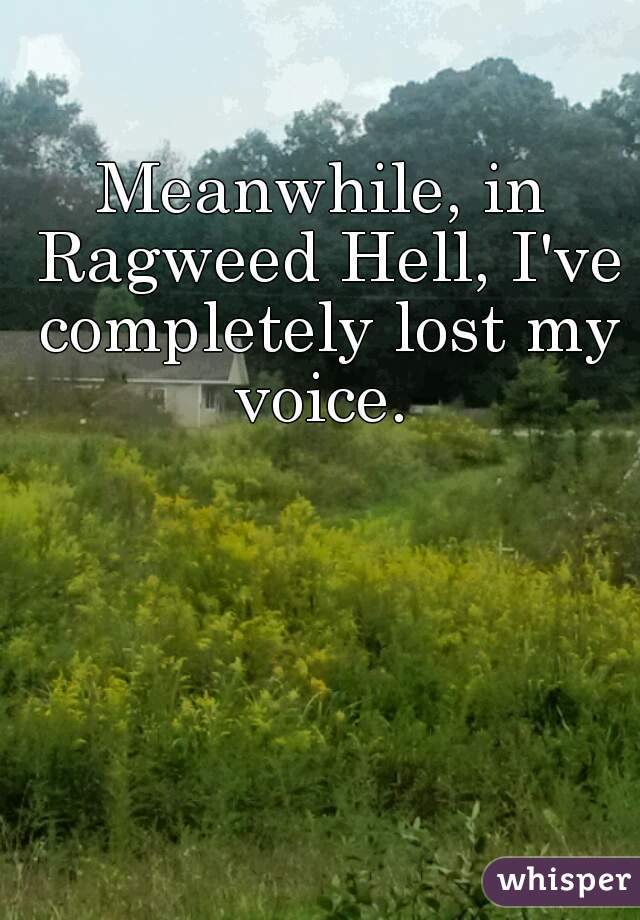 Meanwhile, in Ragweed Hell, I've completely lost my voice.