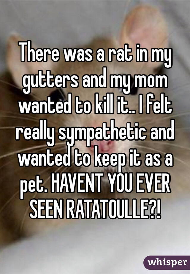 There was a rat in my gutters and my mom wanted to kill it.. I felt really sympathetic and wanted to keep it as a pet. HAVENT YOU EVER SEEN RATATOULLE?!