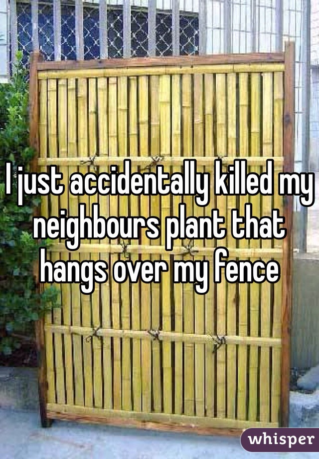 I just accidentally killed my neighbours plant that hangs over my fence