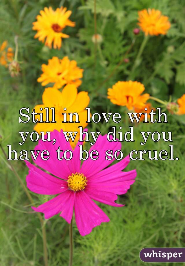 Still in love with you, why did you have to be so cruel.