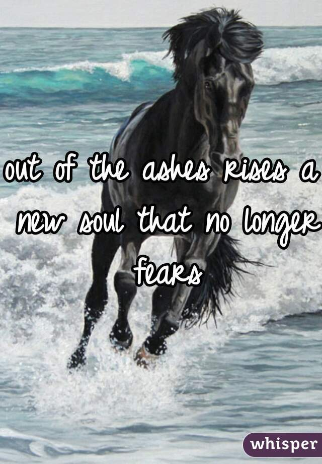 out of the ashes rises a new soul that no longer fears