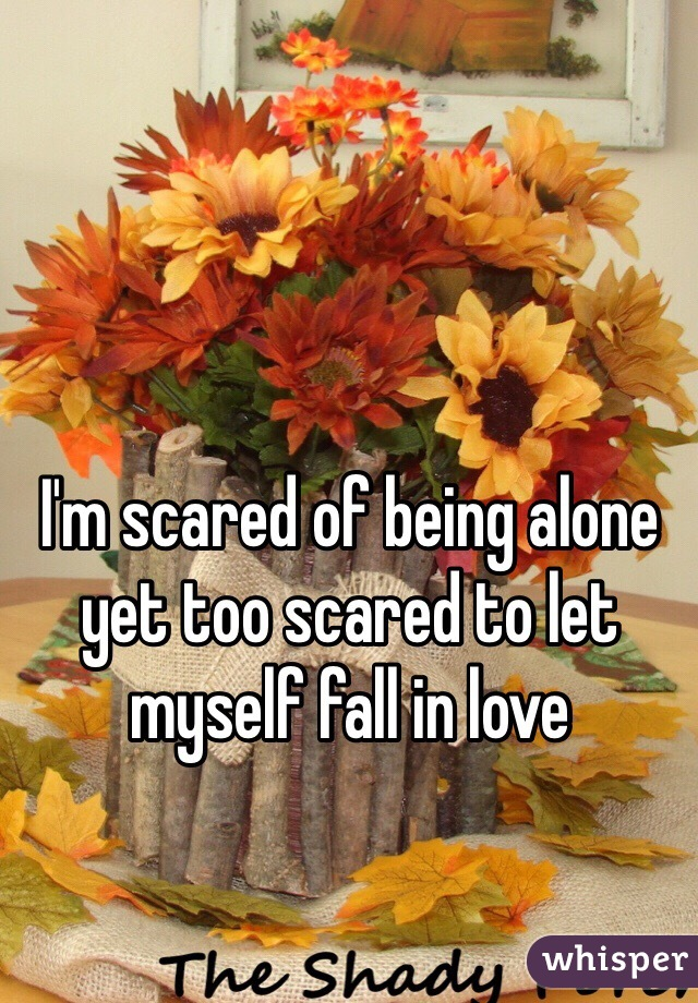 I'm scared of being alone yet too scared to let myself fall in love