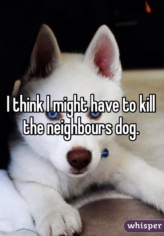I think I might have to kill the neighbours dog.