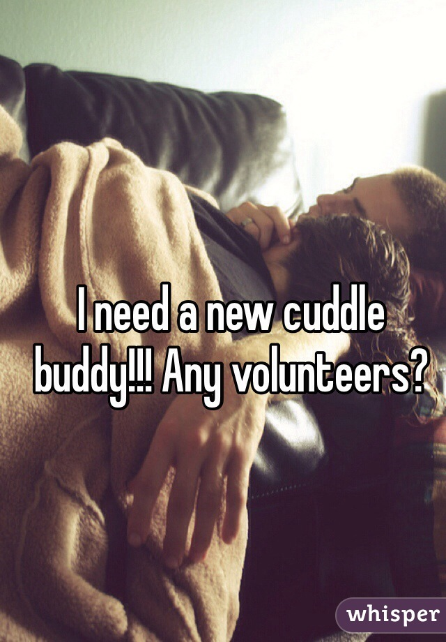 I need a new cuddle buddy!!! Any volunteers?