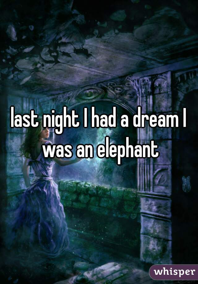 last night I had a dream I was an elephant