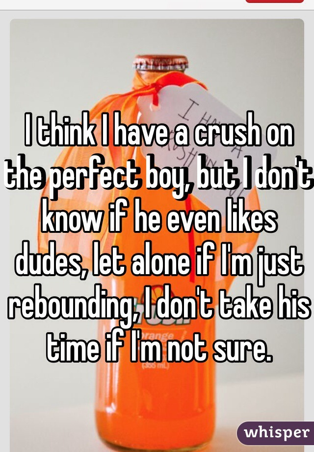 I think I have a crush on the perfect boy, but I don't know if he even likes dudes, let alone if I'm just rebounding, I don't take his time if I'm not sure.