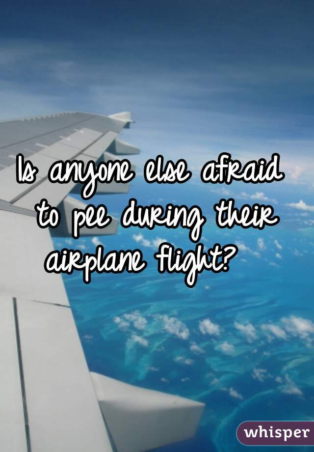 Is anyone else afraid  to pee during their  airplane flight?