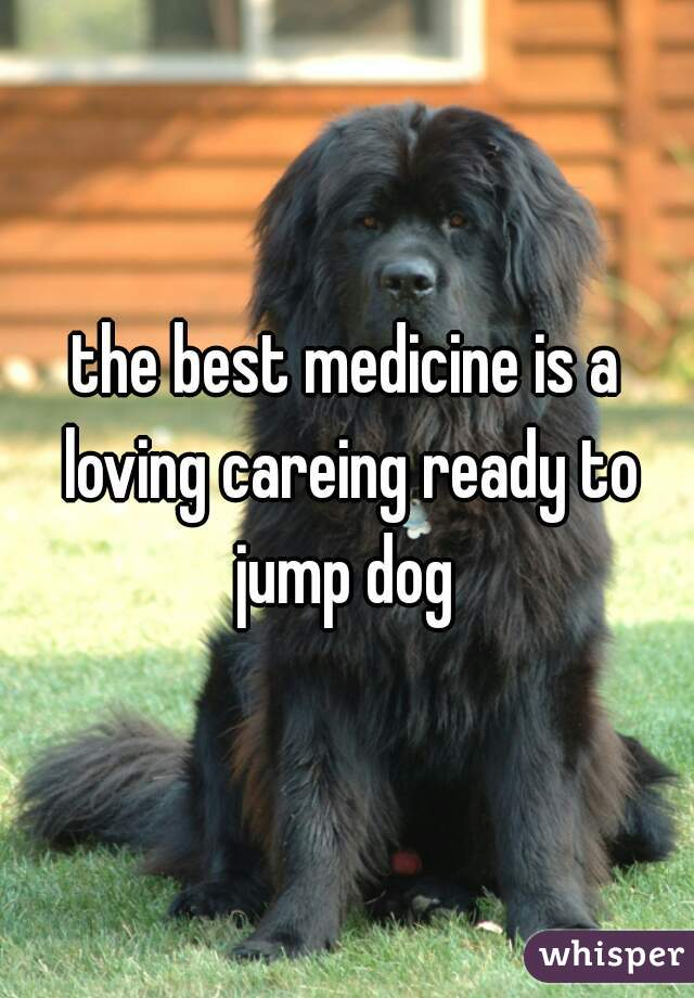 the best medicine is a loving careing ready to jump dog