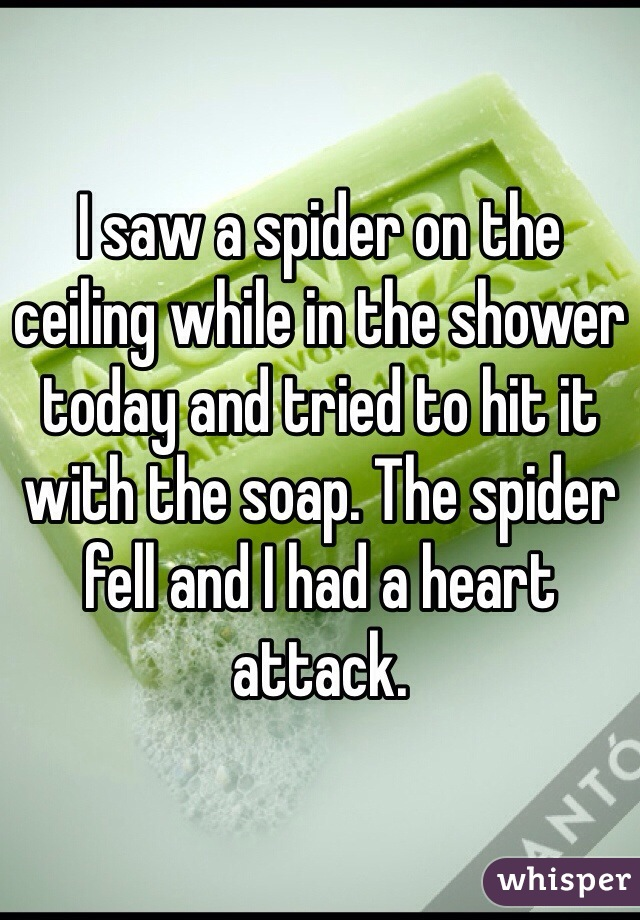I saw a spider on the ceiling while in the shower today and tried to hit it with the soap. The spider fell and I had a heart attack.