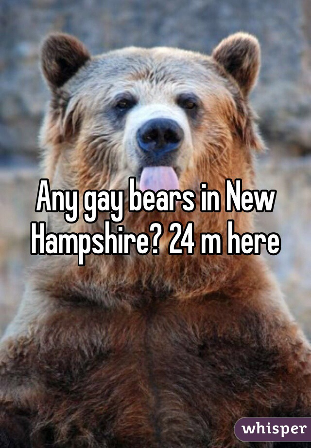 Any gay bears in New Hampshire? 24 m here