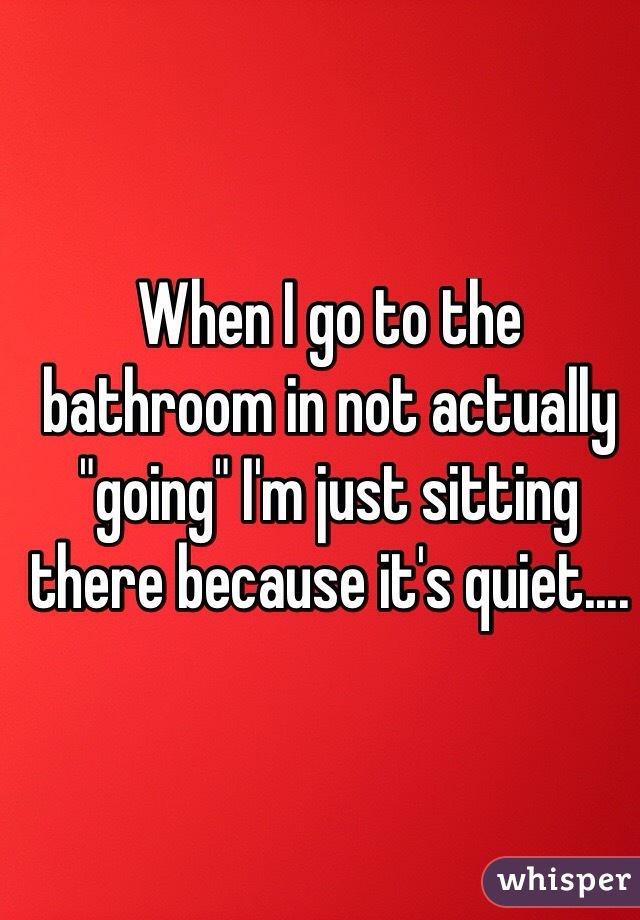 """When I go to the bathroom in not actually """"going"""" I'm just sitting there because it's quiet...."""