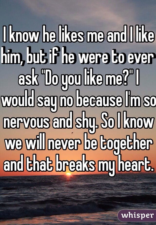 """I know he likes me and I like him, but if he were to ever ask """"Do you like me?"""" I would say no because I'm so nervous and shy. So I know we will never be together and that breaks my heart."""