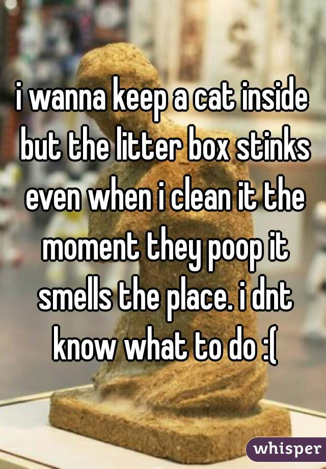 i wanna keep a cat inside but the litter box stinks even when i clean it the moment they poop it smells the place. i dnt know what to do :(