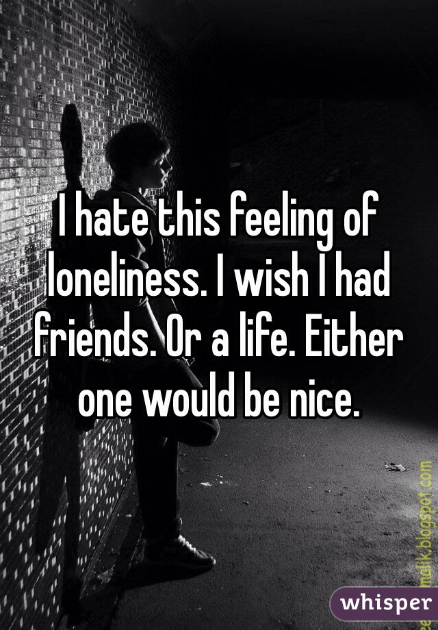I hate this feeling of loneliness. I wish I had friends. Or a life. Either one would be nice.