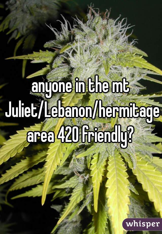 anyone in the mt Juliet/Lebanon/hermitage area 420 friendly?