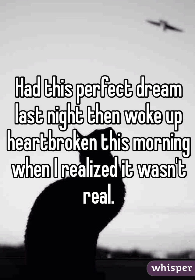 Had this perfect dream last night then woke up heartbroken this morning when I realized it wasn't real.