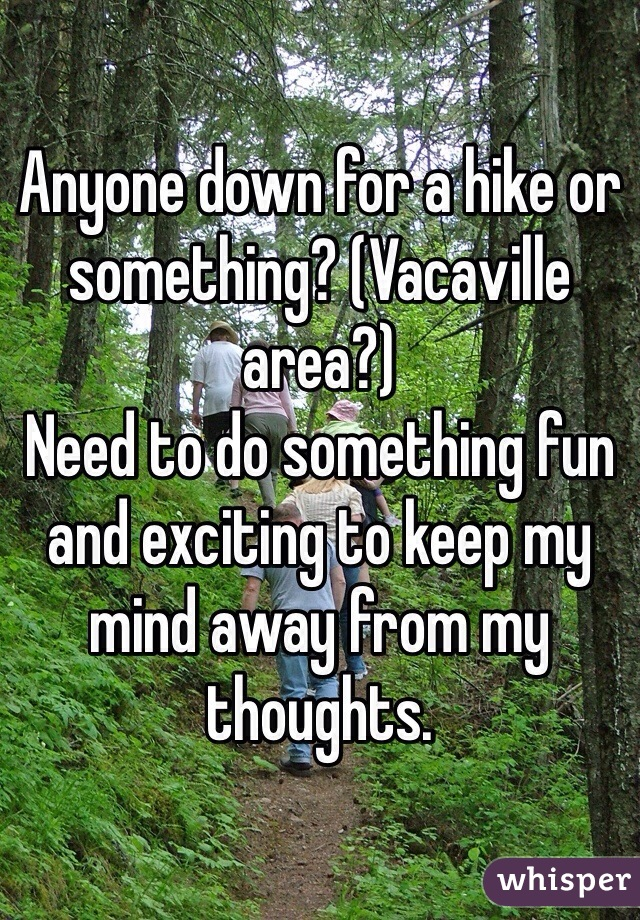 Anyone down for a hike or something? (Vacaville area?) Need to do something fun and exciting to keep my mind away from my thoughts.