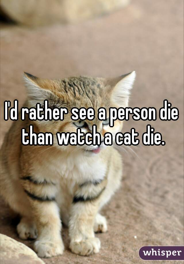 I'd rather see a person die than watch a cat die.