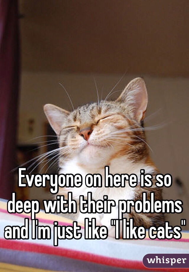 """Everyone on here is so deep with their problems and I'm just like """"I like cats"""""""
