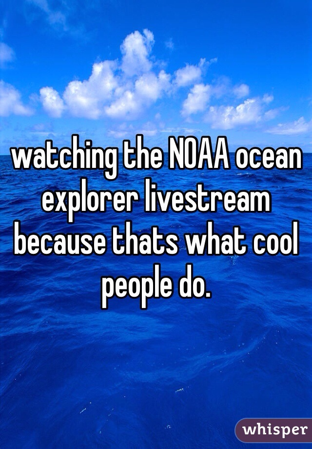 watching the NOAA ocean explorer livestream because thats what cool people do.