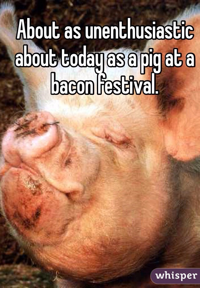 About as unenthusiastic about today as a pig at a bacon festival.