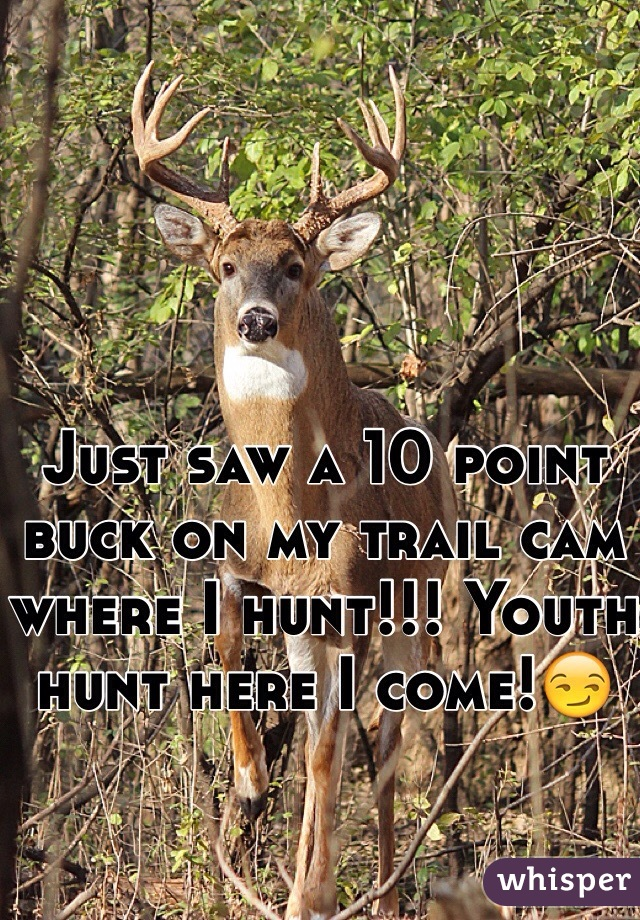 Just saw a 10 point buck on my trail cam where I hunt!!! Youth hunt here I come!😏