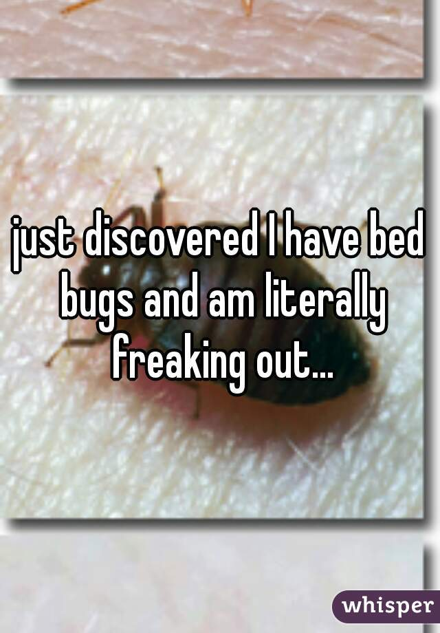 just discovered I have bed bugs and am literally freaking out...