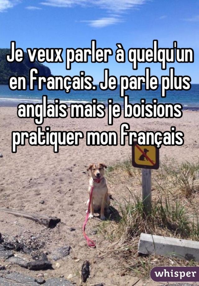 Je veux parler à quelqu'un en français. Je parle plus anglais mais je boisions pratiquer mon français