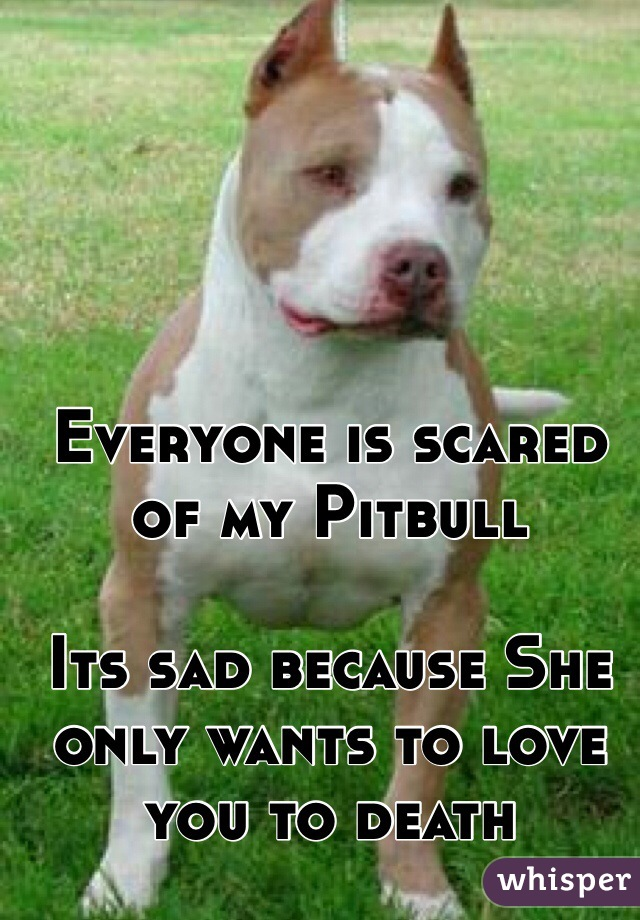 Everyone is scared of my Pitbull  Its sad because She only wants to love you to death