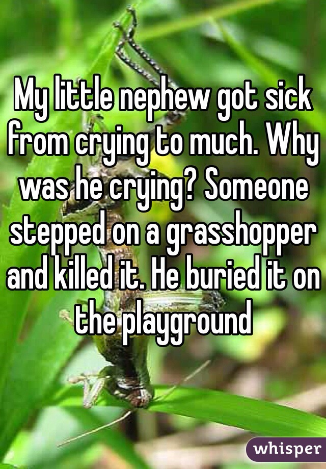 My little nephew got sick from crying to much. Why was he crying? Someone stepped on a grasshopper and killed it. He buried it on the playground
