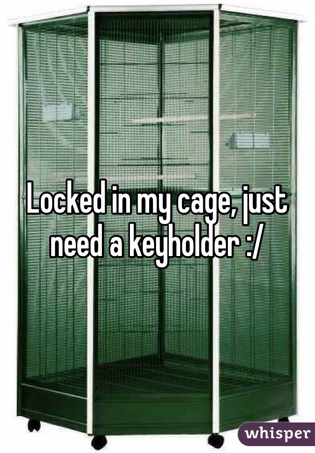 Locked in my cage, just need a keyholder :/