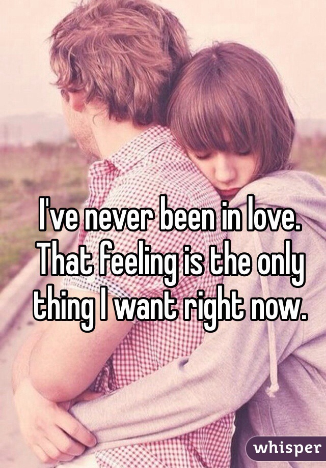 I've never been in love. That feeling is the only thing I want right now.