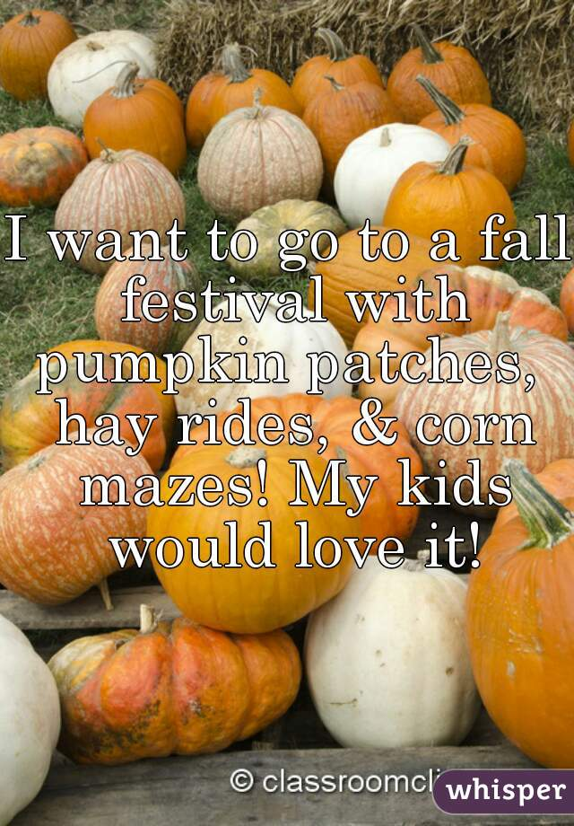 I want to go to a fall festival with pumpkin patches,  hay rides, & corn mazes! My kids would love it!