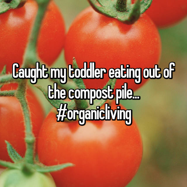 Caught my toddler eating out of the compost pile... #organicliving